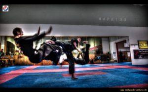 Auch Tritte gehören zum Hapkido.