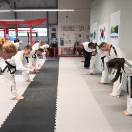 Bericht: Kooperationslehrgang Taekwondo in Coesfeld