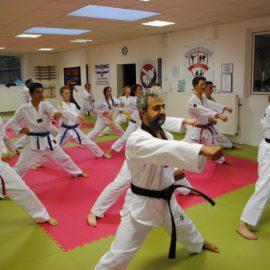 Neue Bilder: Taekwondo-Training