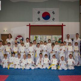 Galerie: Taekwondo-Gürtelprüfung November 2015